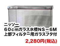 ニッソー 60cmガラス水槽 NS-6M 上部フィルター用ガラスフタ付