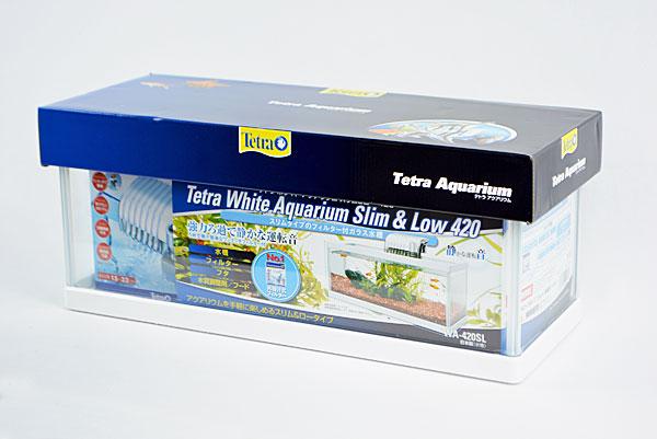tetss1805