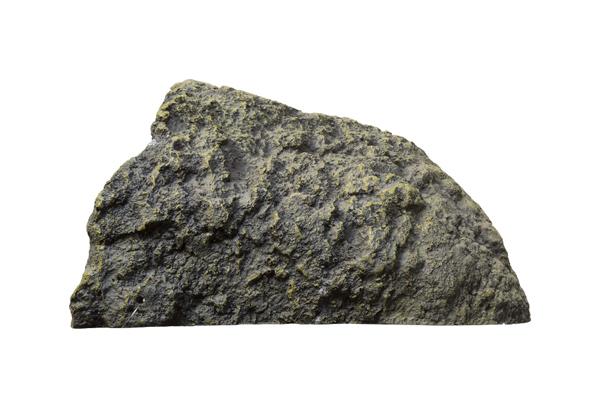 sdor2876
