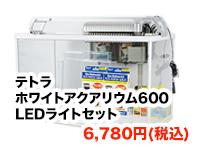 テトラ ホワイトアクアリウム600+LEDライトセット