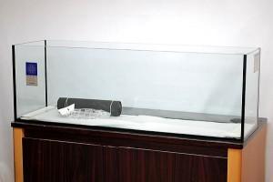 鑑賞魚を飼うなら当店の水槽セットで。120cmの水槽もございます。